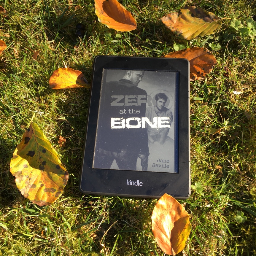 "Review: ""Zero at the Bone"""