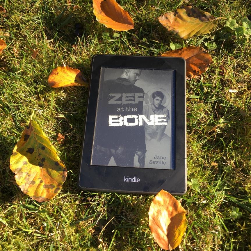 "Review: ""Zero at theBone"""