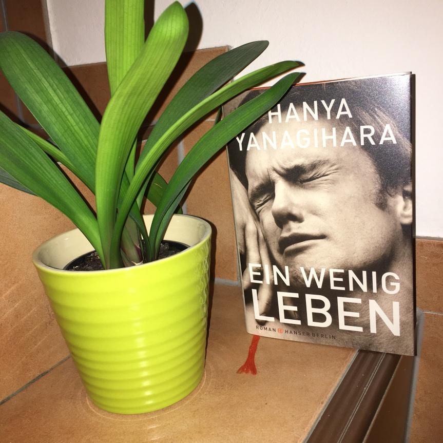 """Review: """"Ein wenigLeben"""""""